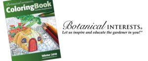 BI Coloring Book
