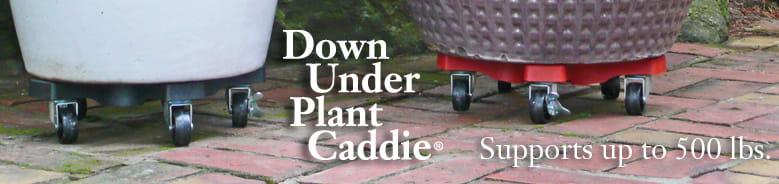 Plant Caddy